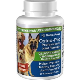 Joint supplements to aid arthritic dogs