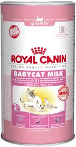 milk formula for kittens Royal Canin