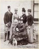 Pug queen Victoria