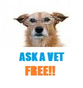 veterinary advice online