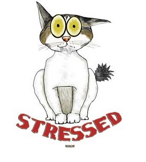 http://yourownvet.com/wp-content/uploads/2011/03/lucy-stressed.jpg
