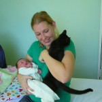 Integrating your pets dogs cats animals with a baby