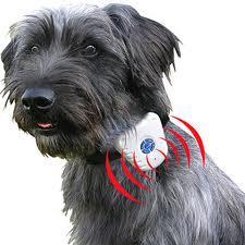 ultrasound anti bark collar