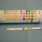 Testing urine in kidney disease